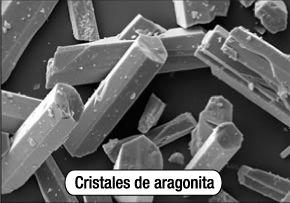 aragonita